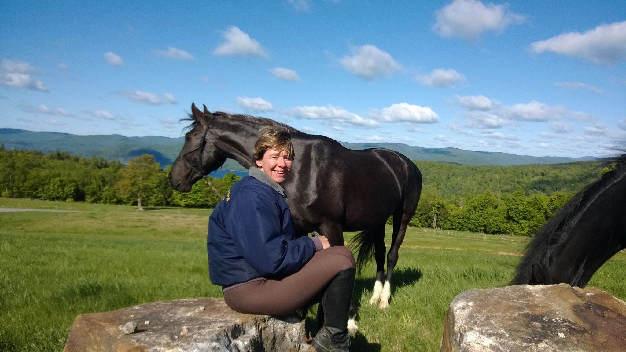 Read more about the article Joy In the Journey: Exploring the Horsemanship Adventure